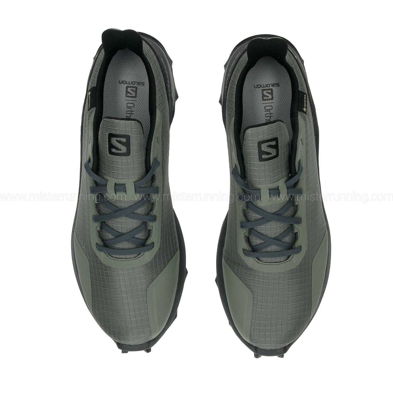 Salomon Alphacross GTX - Castor Gray/Ebony/Black