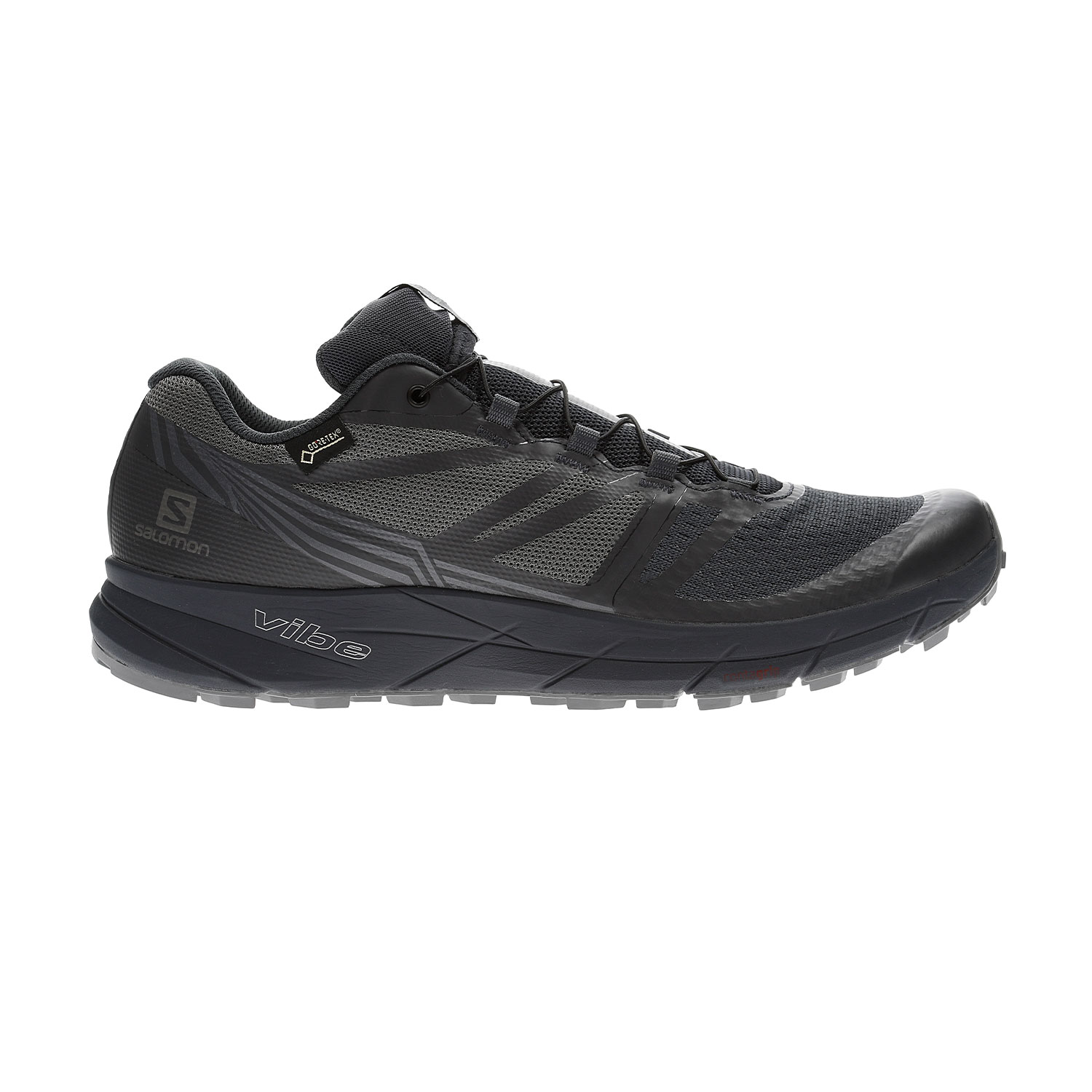 Salomon Sense Ride 2 GTX Mens Running Shoes Gore Tex All