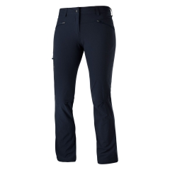 Salomon Wayfarer Pants - Navy
