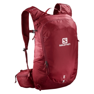 Sport Backpack Salomon Trailblazer 20 Backpack  Purple LC1084600
