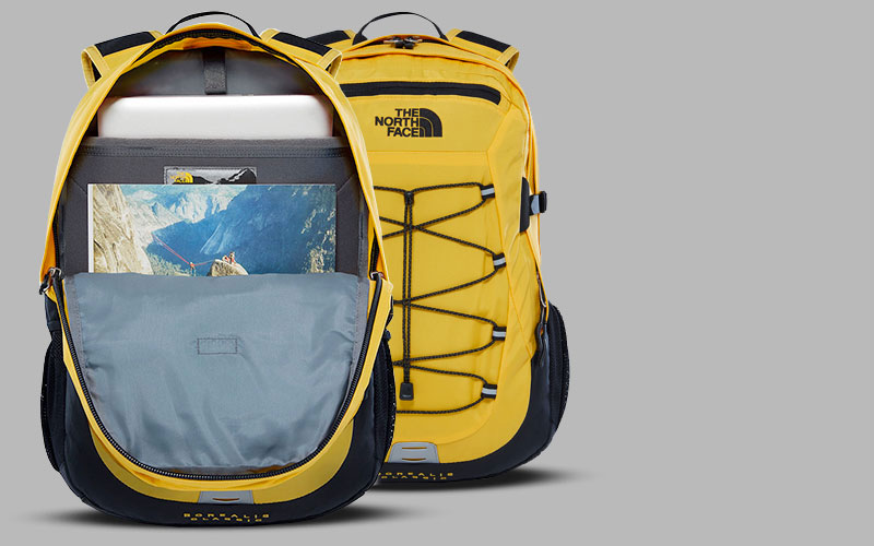 The North Face Borealis Backpacks